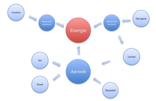 Overzicht van de energie systemen